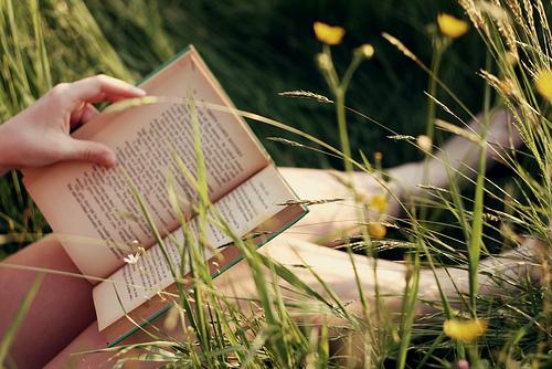 livros de amor